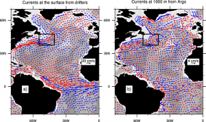 Mean currents at (a) the surface from the Global Drifter Program and (b) a depth of 1000 m derived from Argo float displacements. The black box indicates the transition zone (TZ). (Figure courtesy of Nicolas Barrier (OT-MED Labex)).