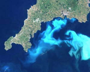 An algae bloom off the southern coast of Devon and Cornwall in England, in 1999. (Credit: PD-USGOV-NASA/Wikipedia)