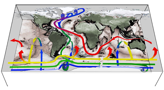 Connectivity of the world's oceans. The upper regions of ocean circulation are fed predominantly by broad upwelling across surfaces at mid-depth over the main ocean basins (rising blue-green-yellow arrows). Upwelling to the ocean surface occurs mainly around Antarctica in the Southern Ocean (rising yellow-red arrows) with wind and eddies playing a central role. (Image: John Marshall and Kevin Speer)