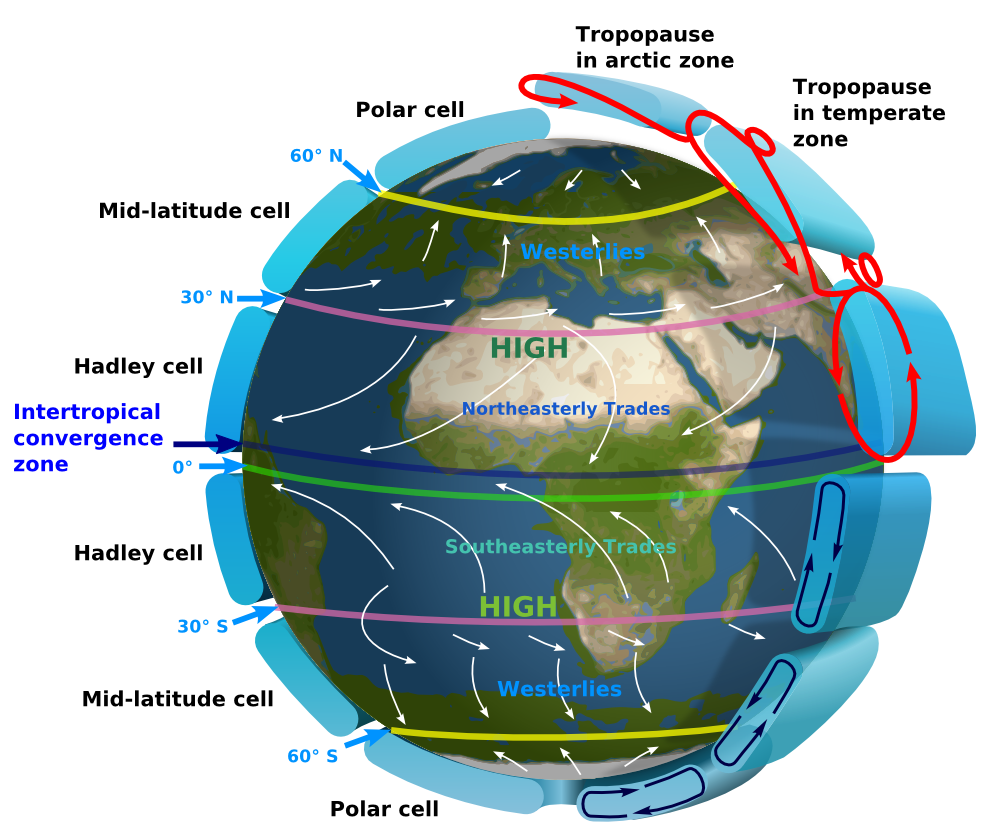 Global circulation of Earth's atmosphere displaying Hadley cell, Ferrell cell and polar cell. (Image: Kaidor, CC BY-SA 3.0)
