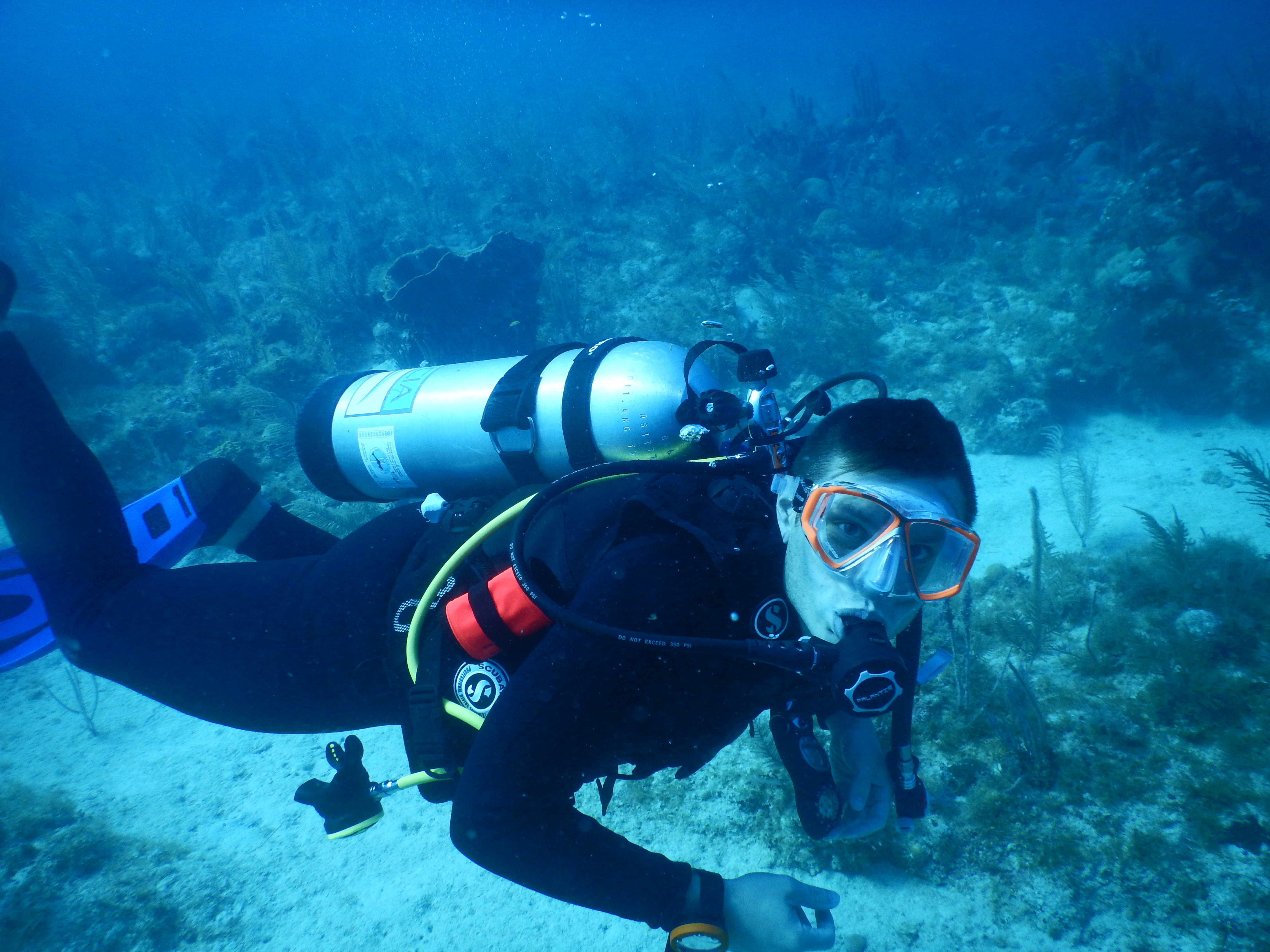 EAPS assistant prof Andrew Babbin dives in the Gardens of the Queen. (Photo: courtesy of Andrew Babbin)