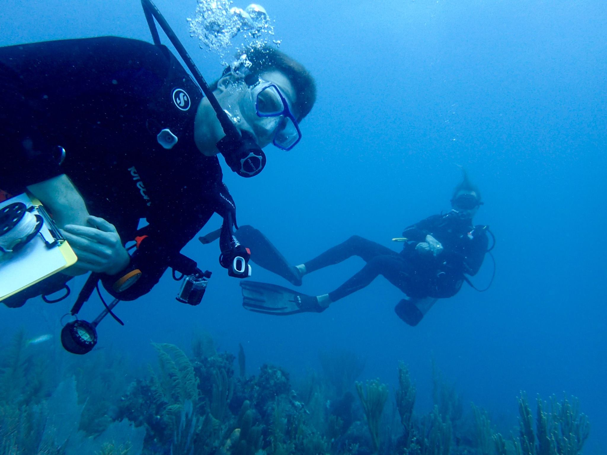 MIT-WHOI Joint Program student Tyler Tamasi dives in the Gardens of the Queen. (Photo: courtesy of Tyler Tamasi)